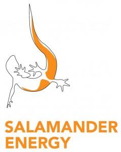 Salamander Energy Logo